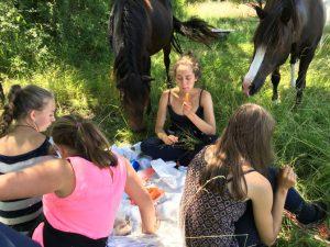 picknick met pony's