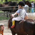 pony-vakantie Dordogne